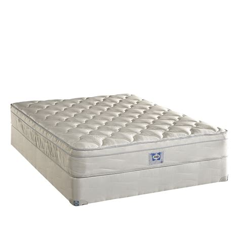 Sears Sealy Mattress by Sealy Plush Mattress Find The Best Mattress Deals