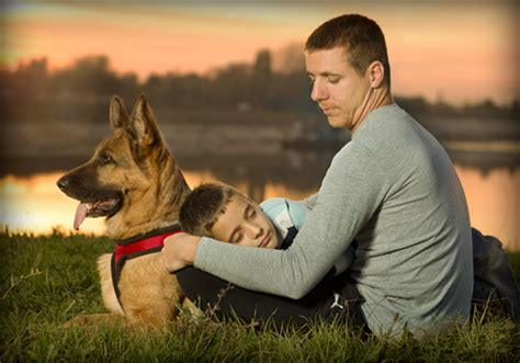 personal protection dogs trained dogs worldwide canine inc
