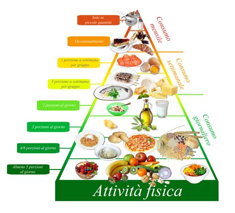 immagini della piramide alimentare 187 la piramide alimentare