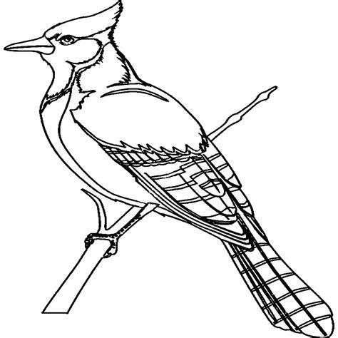 imagenes de animales y plantas para colorear dibujos para colorear dibujos de aves para imprimir