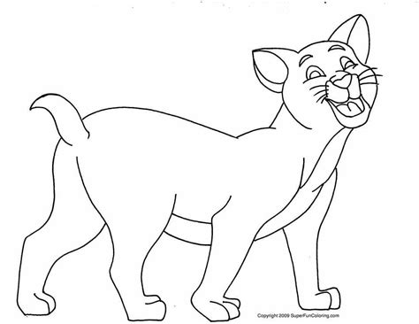 cats coloring pages for kids learning identifying colors