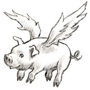 8 best images about Pig Illustrations on Pinterest | Happy ... Flying Pig Drawing