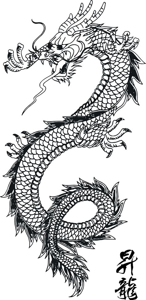 chinese pattern background png line art traditional chinese dragon scales and pattern