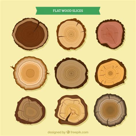 diversi tipi di legno fette di legno di diversi tipi di alberi scaricare