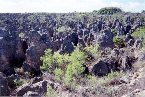 Landscape Environment Definition Land Degradation