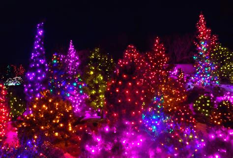 lights colorado 7 the top light displays you gotta see huffpost