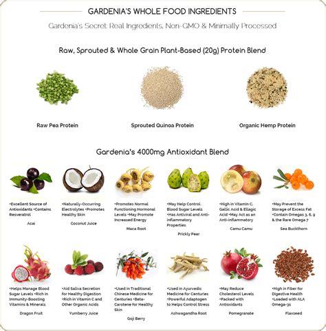 protein nutrition nutrition gardenia vegan protein vanilla bean 950g