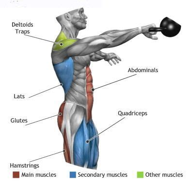 what muscles do kettlebell swings work kettlebell swings effect the above muscle groups muscles