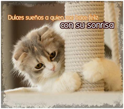 imagenes con frases bonitas de gatitos imagenes de gatos tiernos bebes con frases