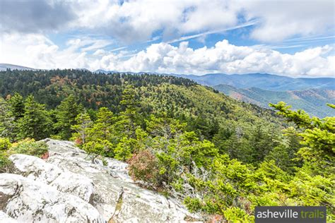 Black Balsam Knob To Cold Mountain by Hiking Trail Gallery