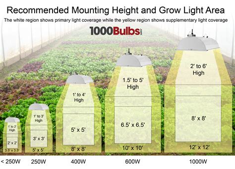 1000 watt grow light coverage grow light basics part 1 1000bulbs com