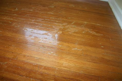 Hardwood Floor Refinishing Products Wood Floor Restoration Products Gurus Floor