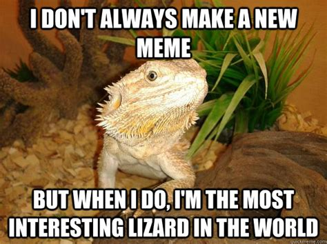 Lizard Meme - funny lizard memes pictures to pin on pinterest pinsdaddy