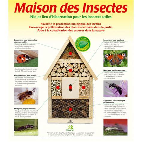 abri des insectes en bois naturel chez jardin et