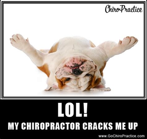 Chiropractor Meme - 1000 images about funny things on pinterest miami