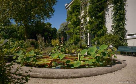 botanischer garten amsterdam unbedingt ansehen botanischer garten amsterdam