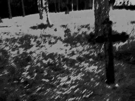 Reddit Metal Detox by Avsky Cleanse The World Sweden Blackmetal