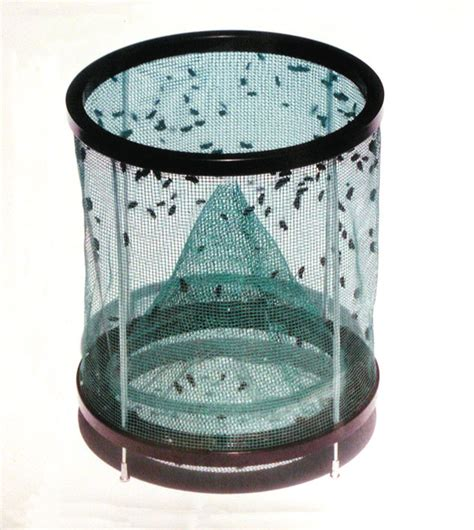 Fly Trap L by Rid Max Fly Trap