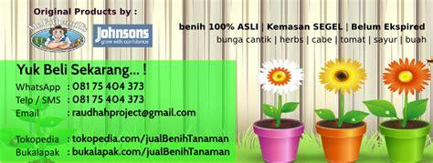 Jual Bibit Cabe Rainbow Di Malang 08175404373 sms wa jual benih cabe pelangi jual benih