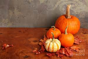 decorative fall pumpkins photograph by verena matthew