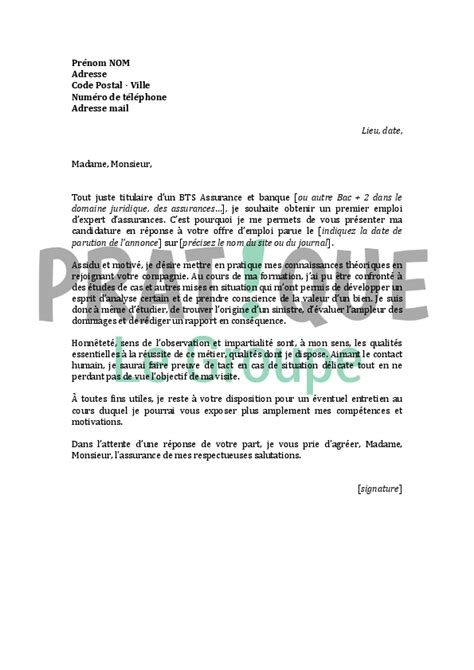 Lettre De Motivation Banque Word Exemple De Cv Inspecteur De Banque