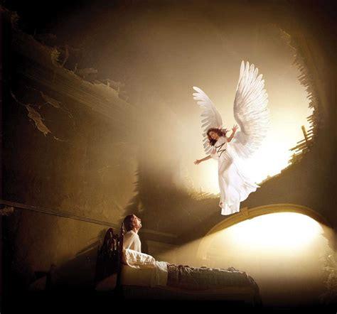1291419829 la science des anges les anges gardiens nos 234 tres de lumi 232 re documystere