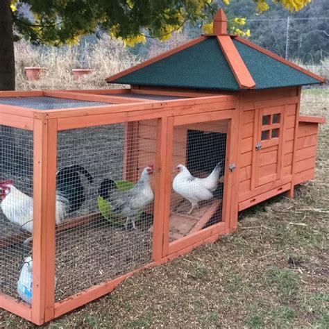 gabbie per galline ovaiole fai da te pollaio in legno da giardino per 2 4 galline ovaiole