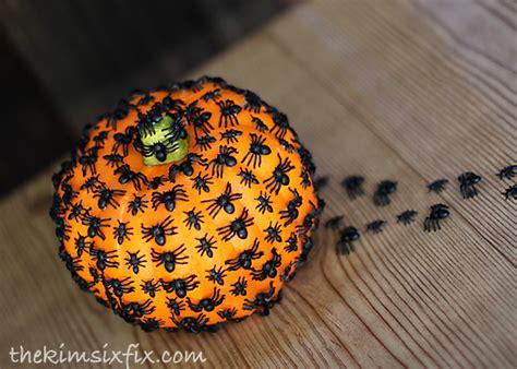 pumpkin spider creepy crawly spider pumpkin the six fix