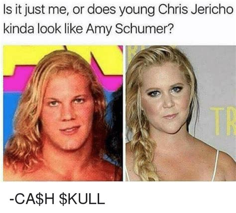 Amy Schumer Meme - 25 best memes about chris jericho chris jericho memes