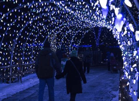 lehigh valley zoo light take this road trip to 10 light displays in