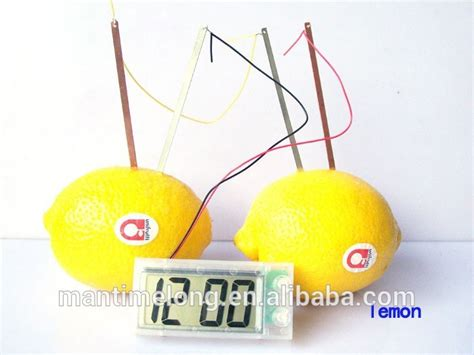 Fruit Powered Clock by New Energy Toys Potato Clock Green Science Electro