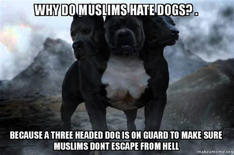 why do muslims dogs why do muslims dogs because a three headed is on guard to make sure