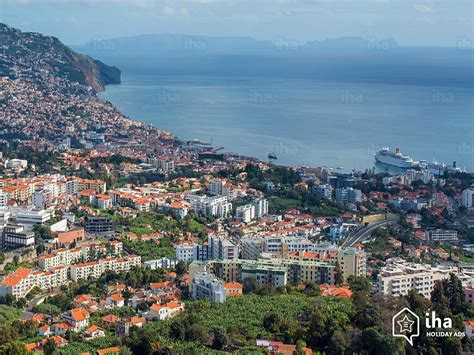 madeira island rentals in an apartment flat for your vacations
