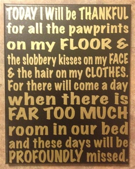 cute dog quotes ideas  pinterest puppy quotes
