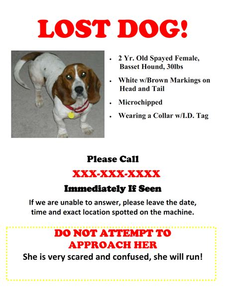 lost flyer flyers lost dogs illinois