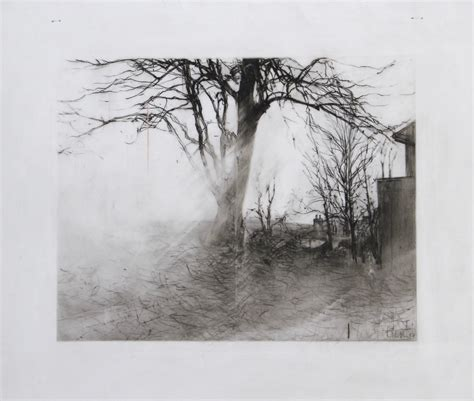 drawings of drawings on mylar laurie steen