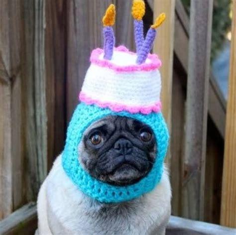 Top  Party Times Celeb Ing Birthdays