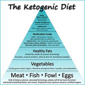 diet menu menu ketogenic diet