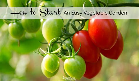 how to start a fruit and vegetable garden 100 starting a fruit and vegetable garden best 25