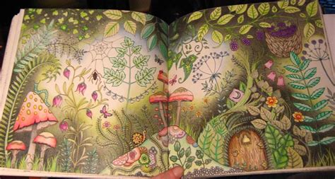 enchanted forest colored enchanted forest coloring book by johanna basford