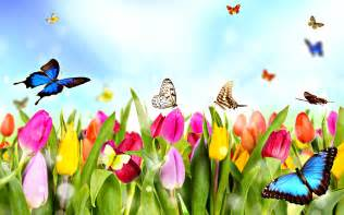 Dream spring 2012 spring time 2560x1600 96689