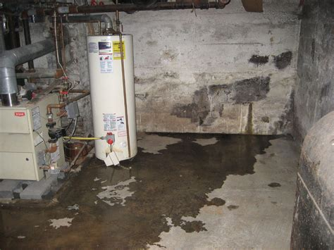 obvious signs that you a bad of basement leakage