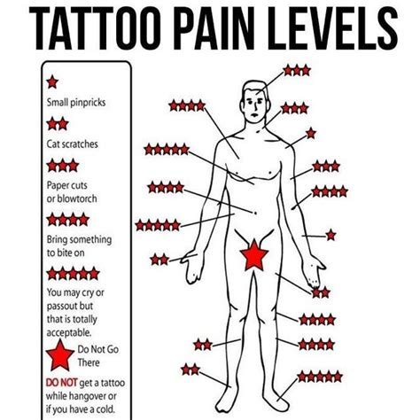 tattoo placement pain 9 best placement for images on