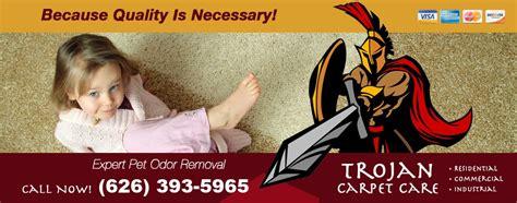 rug cleaning pasadena ca carpet cleaning pasadena ca 626 393 5965 trojan carpet care