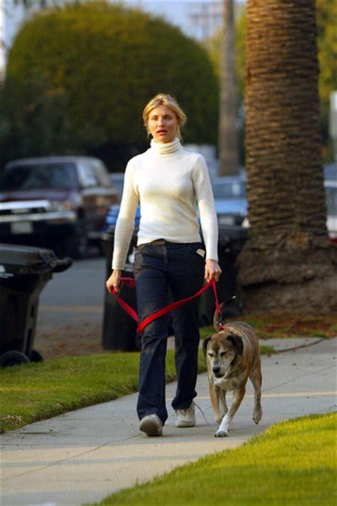 cameron diaz dog cameron diaz in dog lovers 2002 zimbio