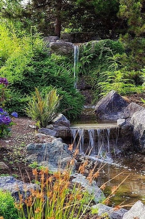 California Backyard Outlet by 25 Best Ideas About The Pond On Ponds Pond