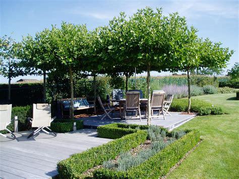 Welke Boom In De Tuin by Bomen Tuincentrum De Molen