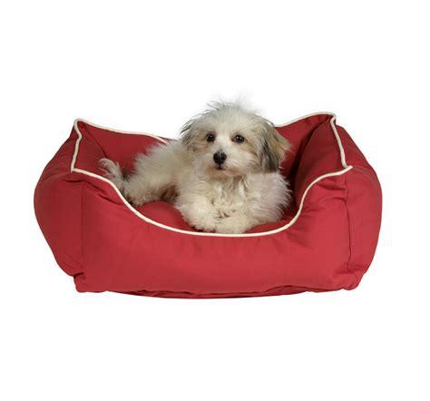 buy large dog house dog beds orvis dog beds outlet bedding sets buy