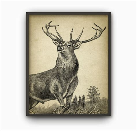 stag wall print deer drawing home decor buck