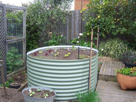 Raised Vegetable Garden Beds Corrugated Iron Corrugated Iron Garden Beds Geelong Raised Ballarat